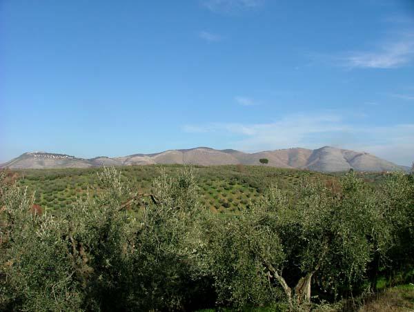 Территория региона Сабина