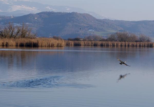 Lakes park