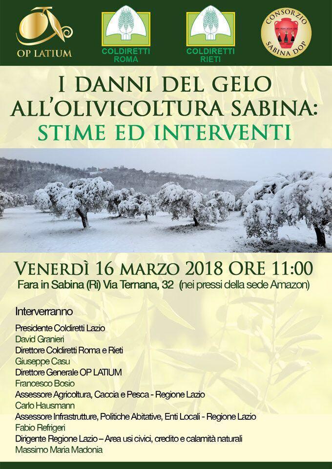 I DANNI DEL GELO ALL'OLIVICOLTURA SABINA: STIME ED INTERVENTI